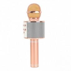 Беспроводной микрофон караоке GTM WS858 с чехлом Gold